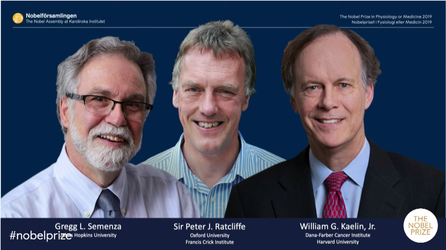 Baker Ruskinn are extremely proud to have been a part of the journey that has resulted in The Nobel Prize for William G. Kaelin Jr, Sir Peter J. Ratcliffe and Gregg L. Semenza.